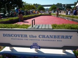 cranberry exhibit