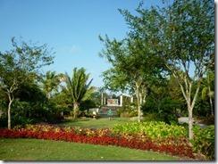 Naples Garden1 (800x600)