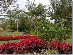 Naples Garden16 (640x480)