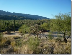 Tanque Verde Dude Ranch