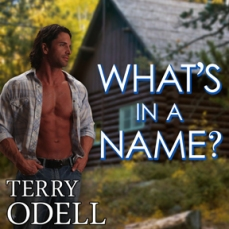 What's in a Name by Terry Odell