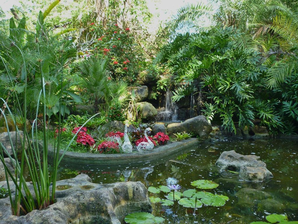 Flamingo gardens nancy j cohen - Flamingo gardens fort lauderdale ...