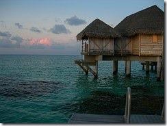 Tahiti Hut