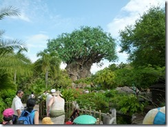 Animal Kingdom2